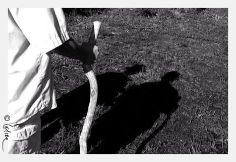 Bóng và hình (Ảnh: Lệ Liễu, 2007)